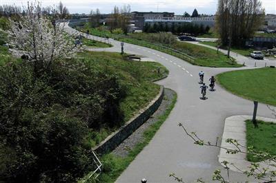 Cyklistická a pešia zeleň