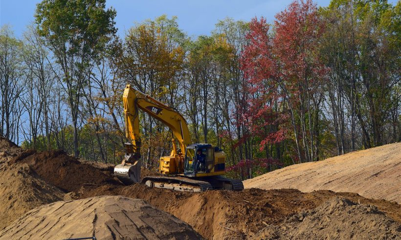 Ako spoznať hrozby pre stromy a zeleň pri stavebnej činnosti?