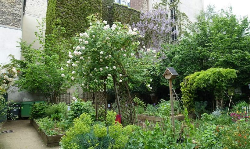 Komunitné záhrady – Paríž, FR