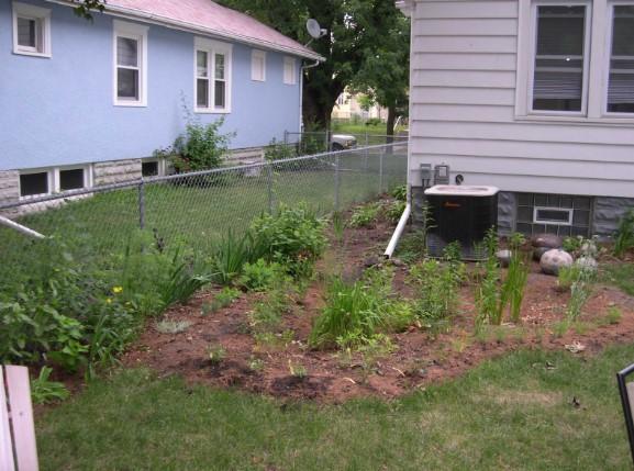 Ako si urobiť  dažďovú záhradu pri dome?