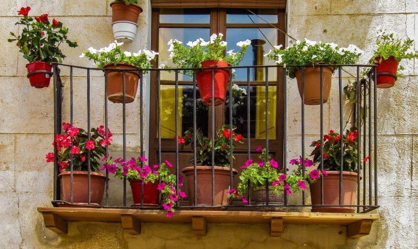 Ako využiť balkón na pestovanie rastlín?