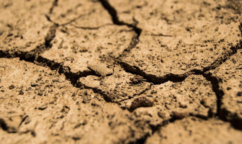 Ako pripraviť domácnosť na extrémne sucho?